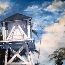 Lignumvitae Watertower - (Framed)