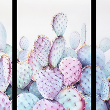 Prickly Endeavors, Triptych - (Unframed)