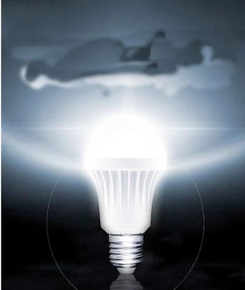 LAMPADINA LED 12 W K 3000