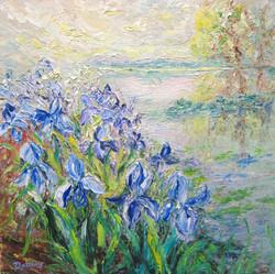 Blue Irises 24x24