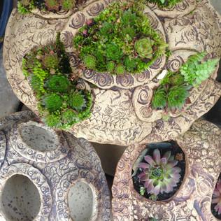 Alpine pebble pots
