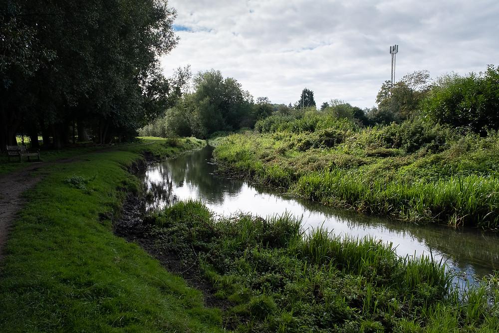 River Beane Hertfordshire