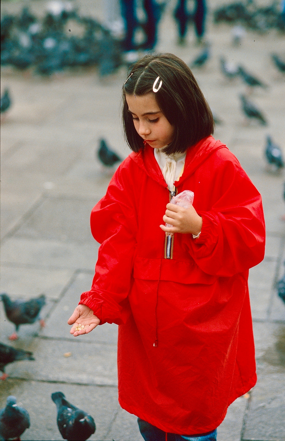 little girl feeding pigeons Venice 1980