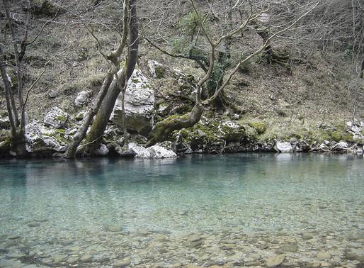 Voidomatis River | Zagori