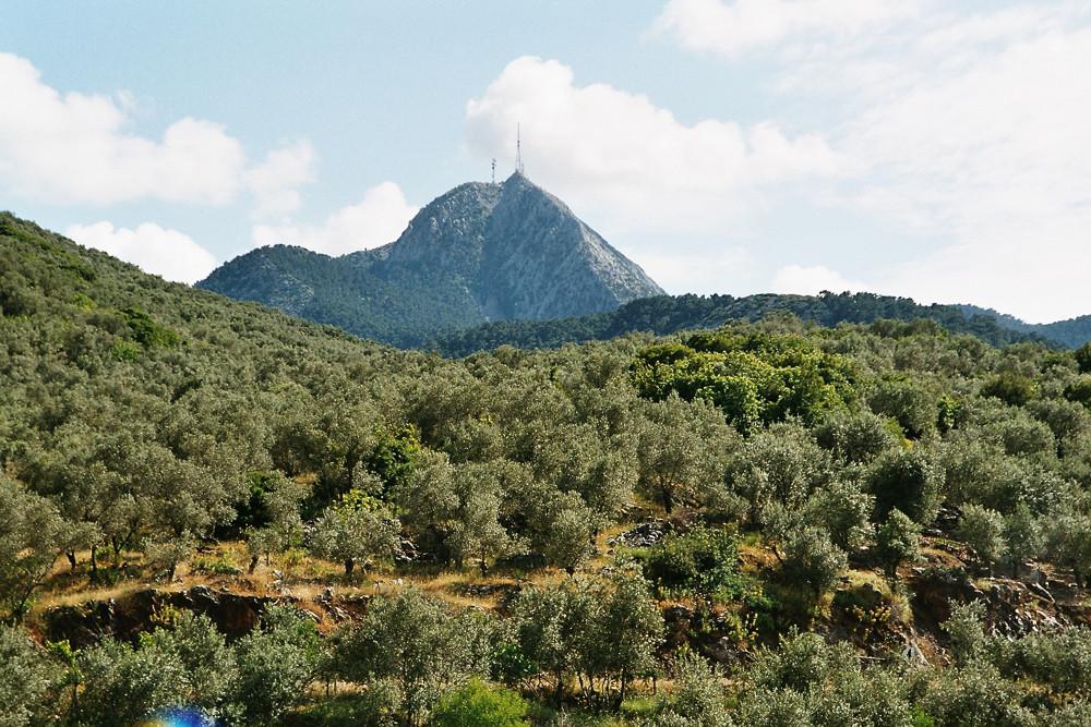 Mount Olympus Lesvos
