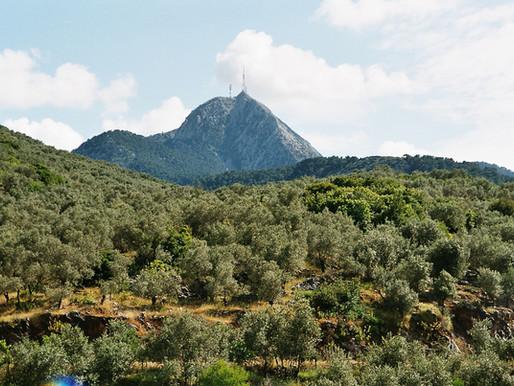 Olympos Mountain | Lesbos