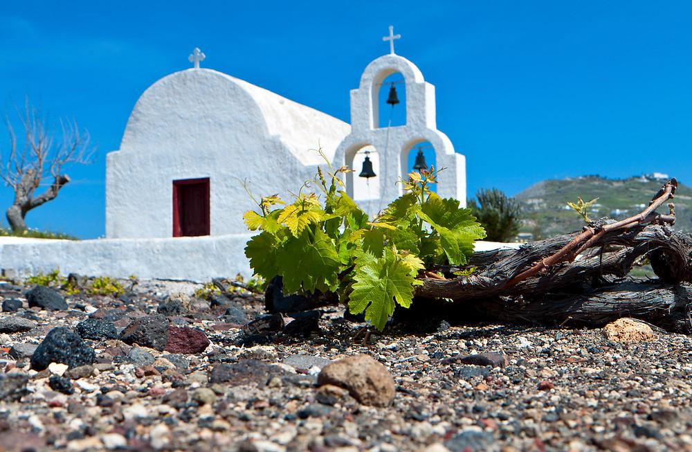 Santorini Wine | Best Products in Santorini Greece