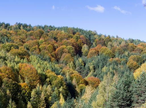Chaintou Mountain   Xanthi Highlands
