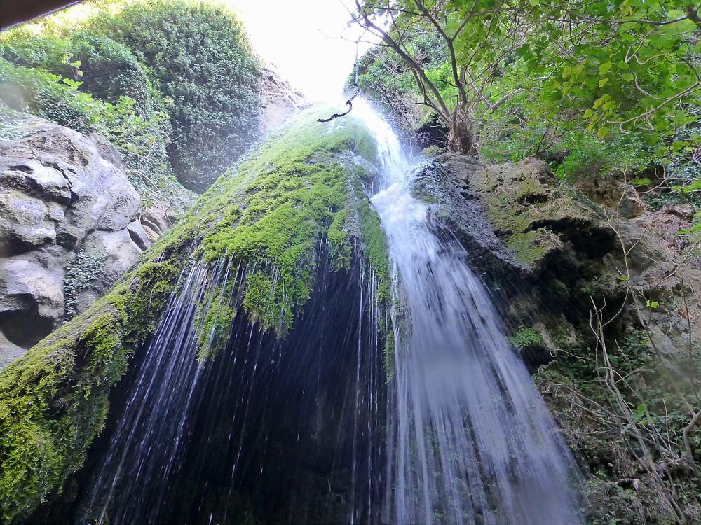 Richtis Gorge Crete