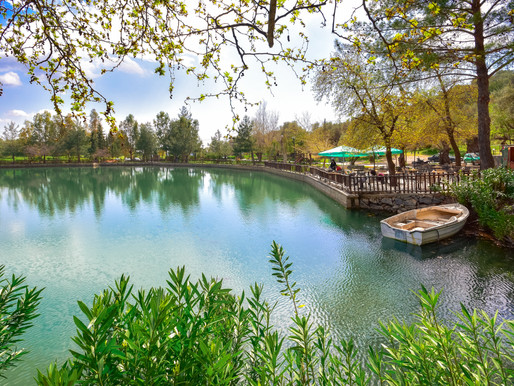 Zaros Artificial Lake | Heraklion Crete | Salmons and Trouts