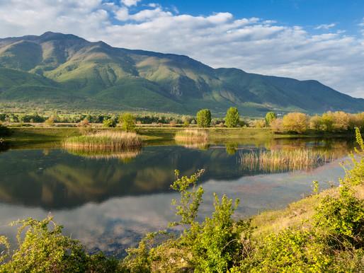 Kerkini Lake   Rare Birds & Water Buffaloes