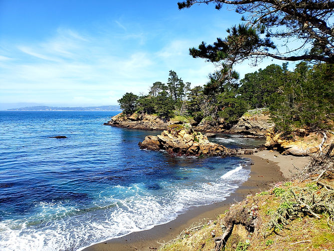 Point Lobos Preserve Hike Adventure Apri