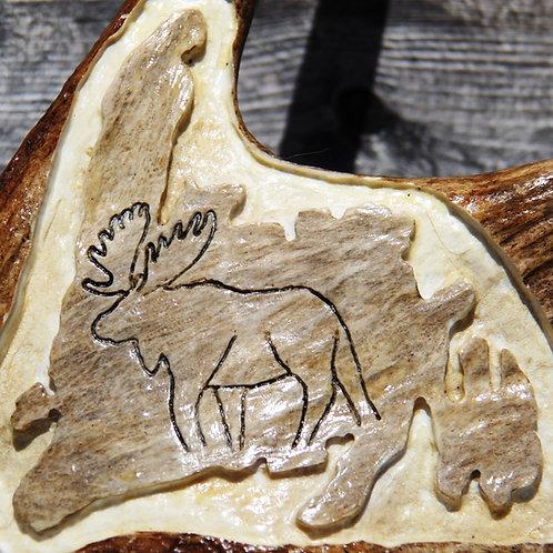#58 Moose On NL Map -25