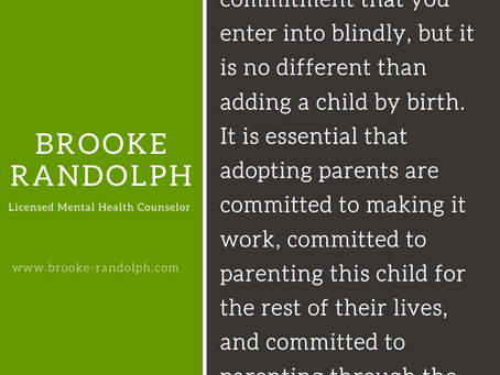 Consumer mentality in Adoption