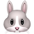 rabbit-face_1f430.png