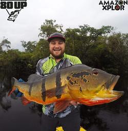 Pescaria no amazonas - tucunare (111)