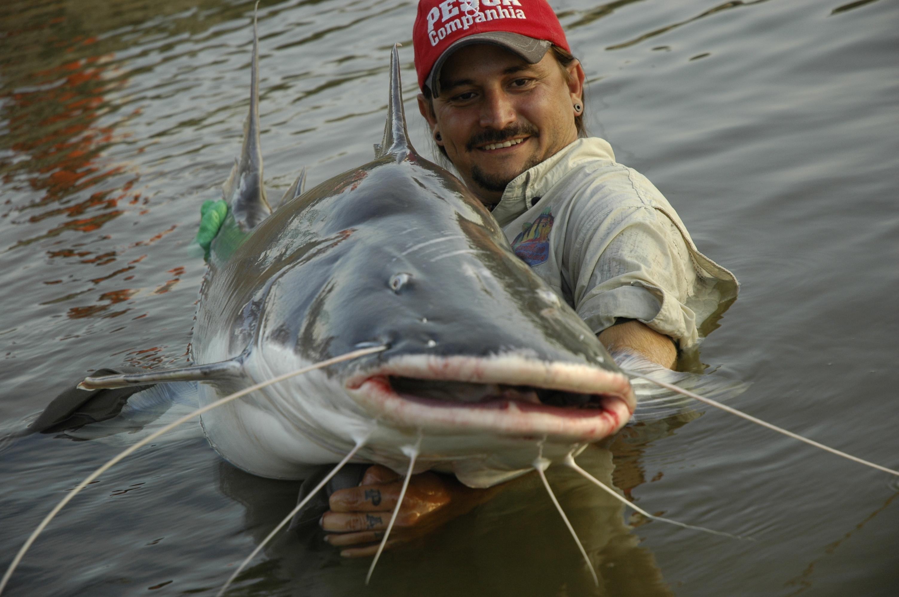 Pescaria de Piraíba