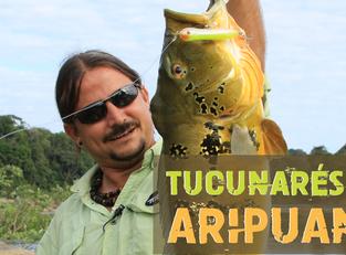 Pescaria no Amazonas - Tucunarés