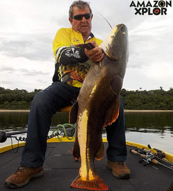 Pescaria no amazonas - tucunare (77)