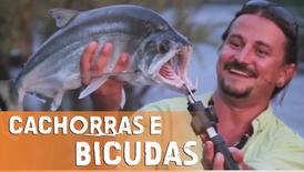 Pescaria no Amazonas - Pesca de Bicudas