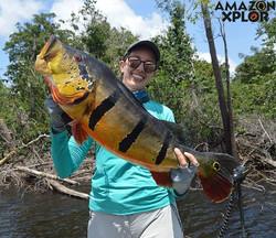 Pescaria no amazonas - tucunare (49)