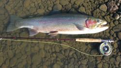 jurassic_lake-pescaria_de_truta_50