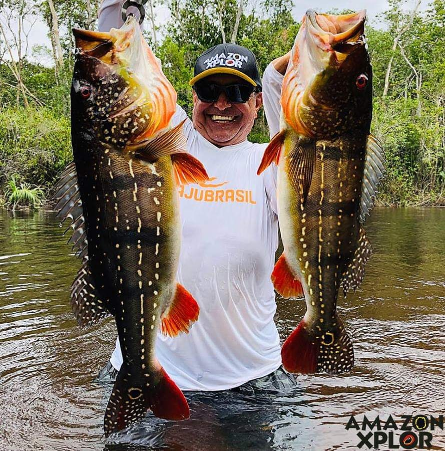 Pescaria no amazonas - tucunare (63)