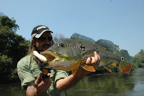 Pescaria Pira Açu - Amazonas - Setembro de 2019