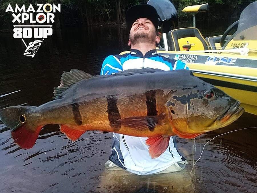 Pescaria no amazonas - tucunare (104)