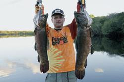 pescaria-de-trairão-suia-micu-6