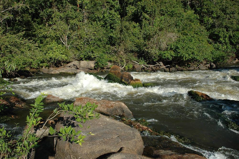 Tombo grande - Rio Paxiúba