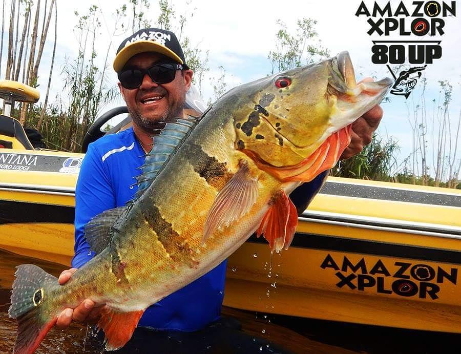 Pescaria no amazonas - tucunare (50)