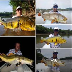 Pescaria-no-rio-abacaxis (6)