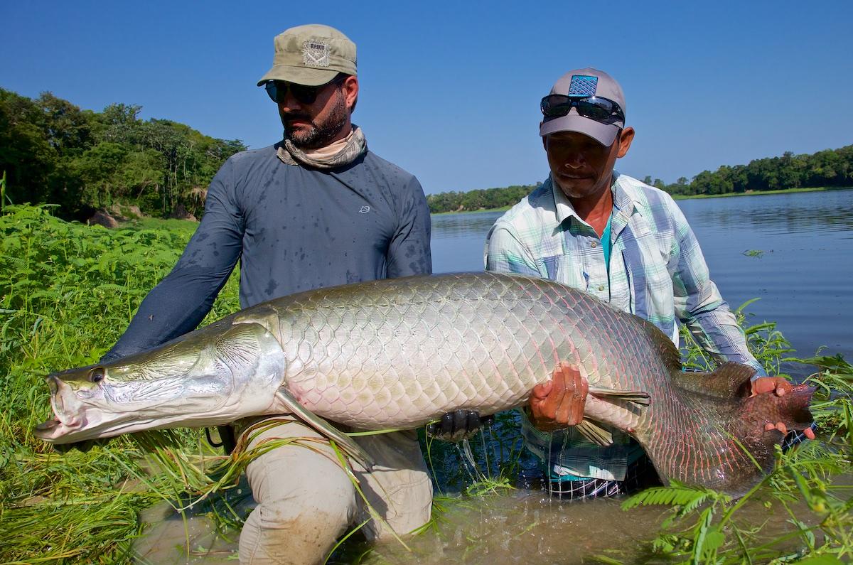 Pescaria-de-pirarucu (1)
