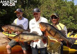 Pescaria no amazonas - tucunare (68)