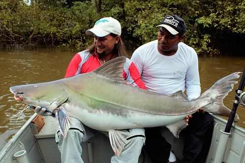 Pescaria Pira Açu - Amazonas - Maio 2019