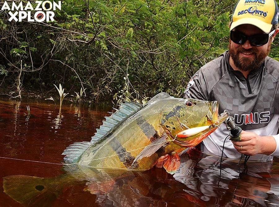 Pescaria no amazonas - tucunare (114)
