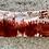 Thumbnail: Firewood Tie-Dye