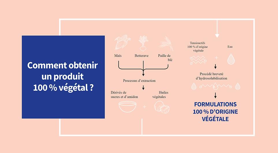 schema produit vegetal.PNG