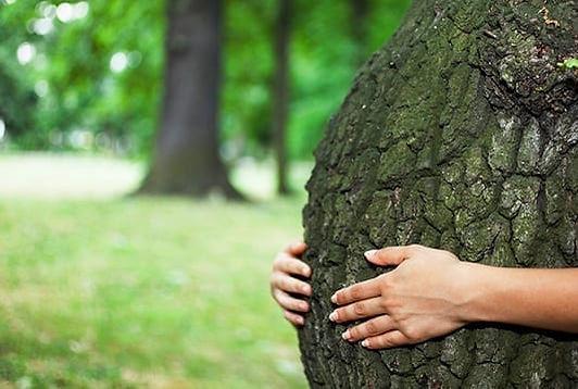 Engagement-Ecologique-naturopera.jpg