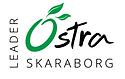 Leader Skaraborg.PNG