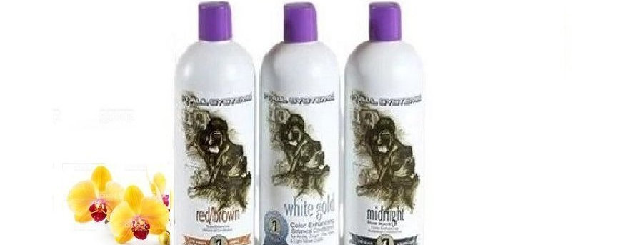 #1 All Systems Color Enhancing Color Conditioner