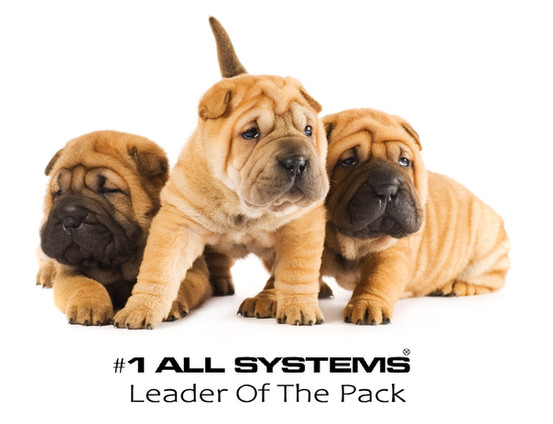 Why #1 All Systems