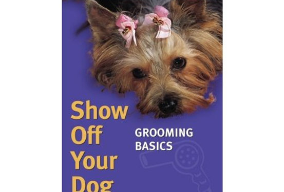 Dog Grooming Video Show Off Your Dog Basic Grooming