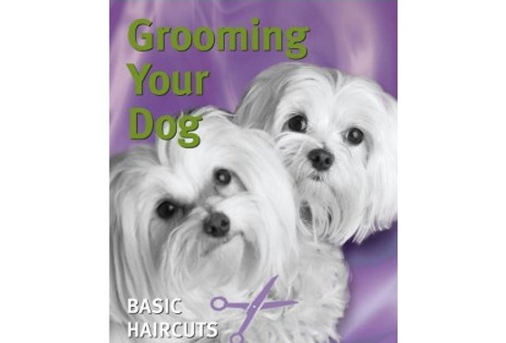 Best-selling video shows you how to groom your dog at home