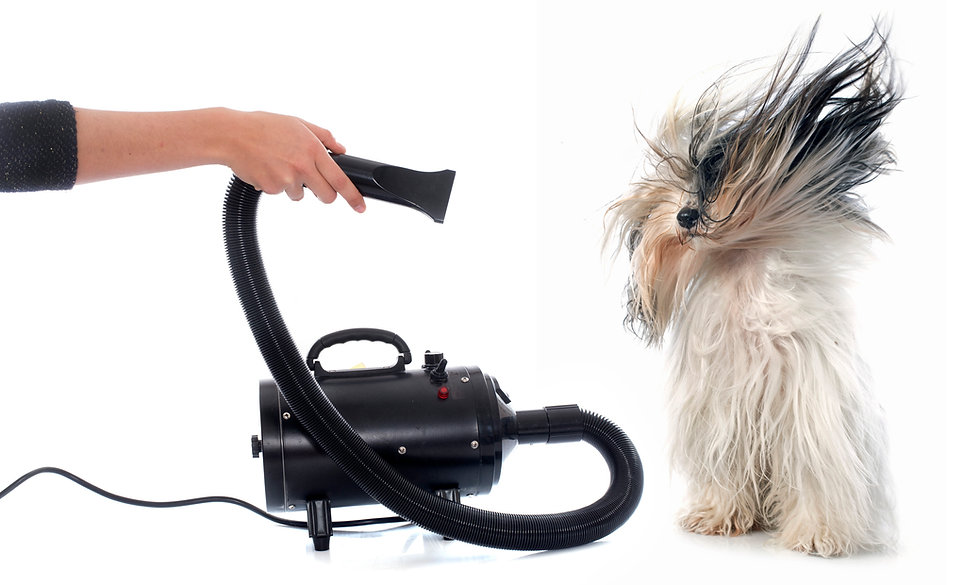 Here is equipment designed by leading USA manufacturers Metro and Midwest Grooming. Proven, built for you grooming in a shop or at home and built to last.   Finish up your pet grooming tasks and groom like a pro.