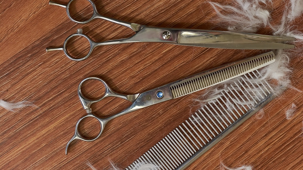Critically acclaimed dog grooming videos demonstrate all you need to know for grooming your dog at home like a pro. Learn BASIC HAIRCUTS that are adaptable for every breed. And, for keeping longhaired looking beautiful in full coat GROOMING BASICS features a world-class breeder-exhibitor who shares her secrets.