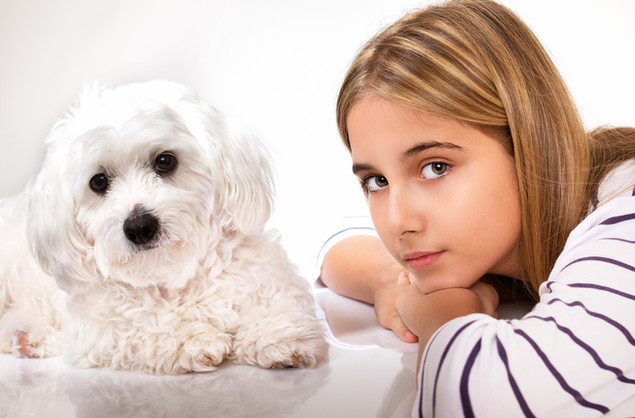 #1 All Systems For Grooming White Dogs