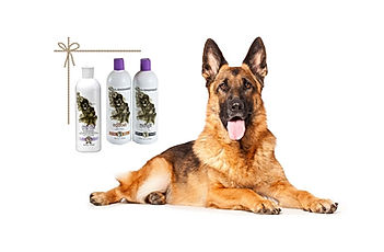 color pack GSD 3.jpg