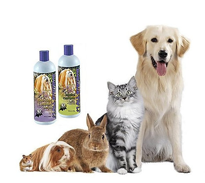 #1 All Systems . The Basics For All Pets